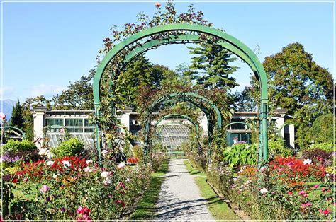 pianta fiorita tutto l anno parco villa pallavicino fiorita tutto l anno lago