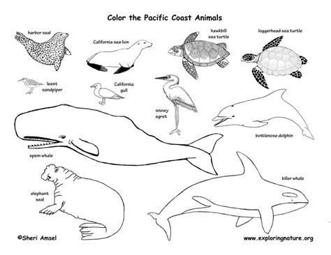 coloring pages alaska animals alaska