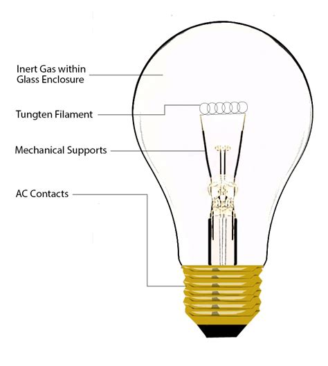 electric light bulb schematic get free image about