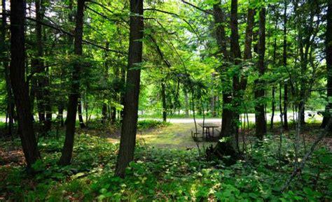 Door County Wisconsin Cgrounds by Wonderful Family Cground Review Of Rustictimbers Door