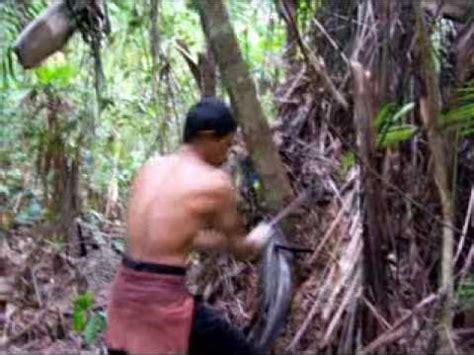 Tongkat Pentung Stick Kayu Liwung Macan Diameter 25 Cm Panjang 70 Cm keunikan batu akik kayu liwung fosil kayu aren o doovi