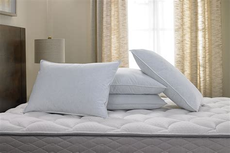 pillow with feather pillow doubletree at home hotel store
