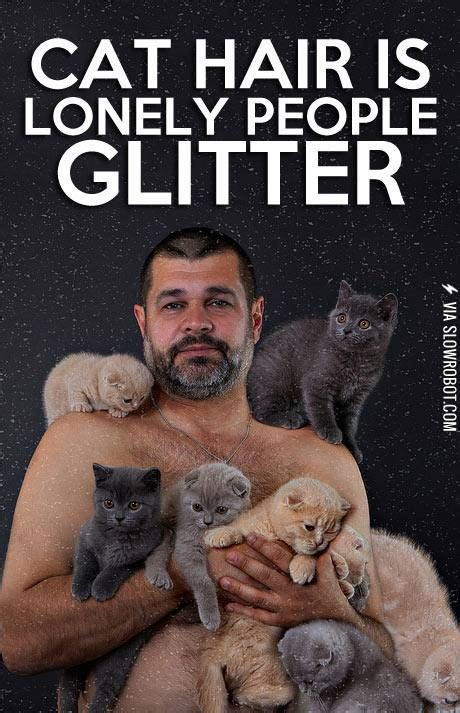 Crazy Cat Man Meme - cat hair is lonely people glitter