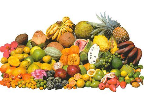 alimentazione fruttariana cos 232 la dieta fruttariana conosciamo il fruttarianesimo