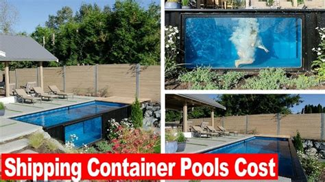 seecontainer pool look this shipping container pools cost