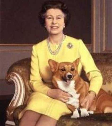 Queen Elizabeth Ii Corgis by La Reine D Angleterre Et Ses Corgis