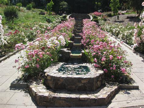 san francisco morcom rose garden