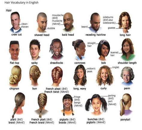 hair vocabulary hair vocabulary in english vocabulary home