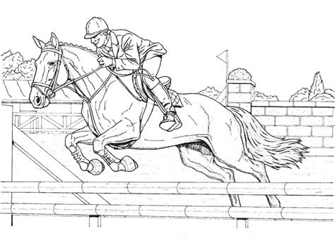 Coloriage Sports Equitation 224 Colorier Allofamille