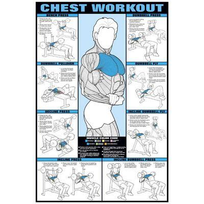 chest workout poster weight lifting exercises chart workouts best chest workout workout