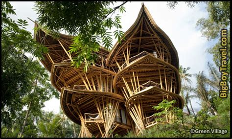 coolest treehouse in the world best treehouse hotels in the world top 10