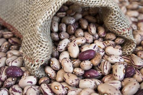 quali alimenti contengono il magnesio i 13 alimenti pi 249 ricchi di magnesio gallerie agrodolce