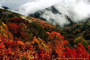 smoky mountains fall colors great smoky mountains fall foliage 32 smokyphotos