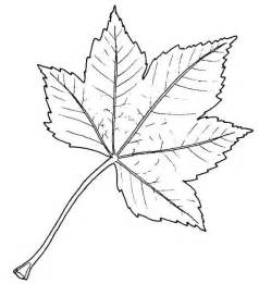 Outline Drawing Of A Leaf by Skendree14 S Just Another Site Page 4 Woodturning Designs