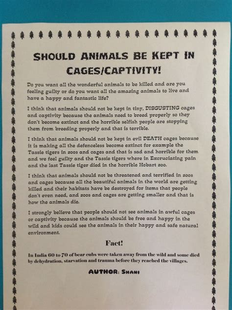 Animal Cruelty In Circuses Essay by What Is An Argumentative Essay La Trobe Argument Essay About Zoos Best Custom
