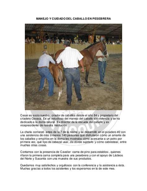toda la informaci 243 n sobre tankard en colombia factor metal razas manejo y cuidados caballo manejo y cuidado caballo en pesebrera