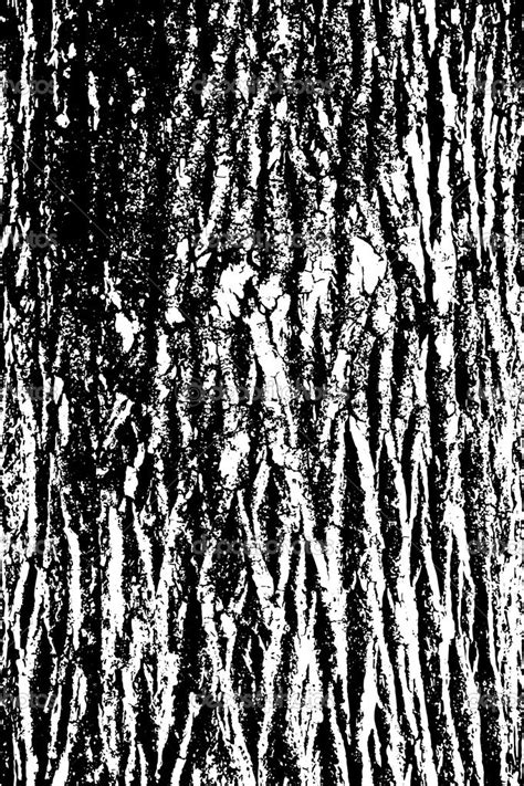 bark pattern drawing texture clipart tree bark pencil and in color texture