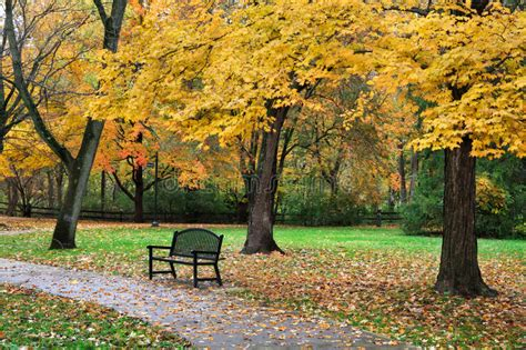 autumn park bench stock photo image  lush colorful