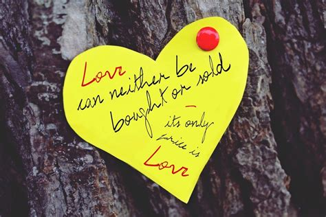imagenes de san valentin de amor en ingles frases de san valent 237 n para aprender ingl 233 s