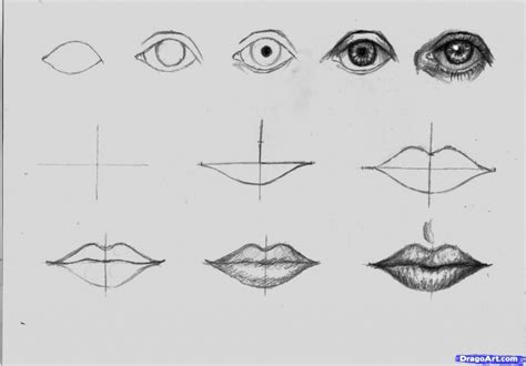 Drawing In Pencil Step By Step by How To Draw Step By Step With Pencil Drawing Pencil