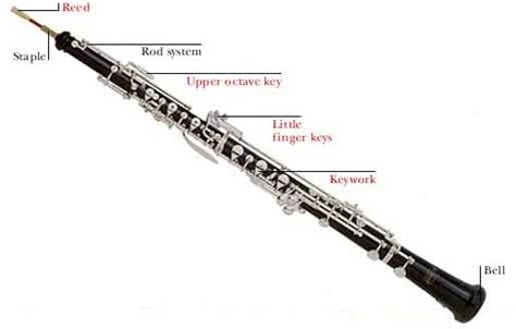 oboe diagram enchantedlearning book covers