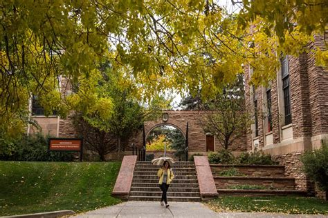 Cu Boulder Mfa Mba by Cu Boulder Admissions Act Scores Acceptance Rate