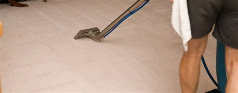 comfort carpet clean cleaning service perth james cleaning service