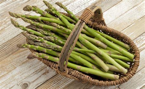 come cucinare gli asparagi come contorno ricette veloci con gli asparagi da servire come contorno