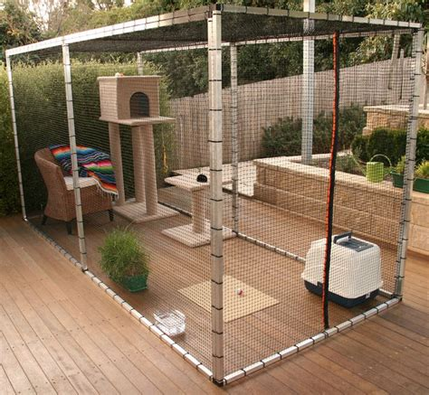 backyard cat enclosure 25 best ideas about cat enclosure on outdoor