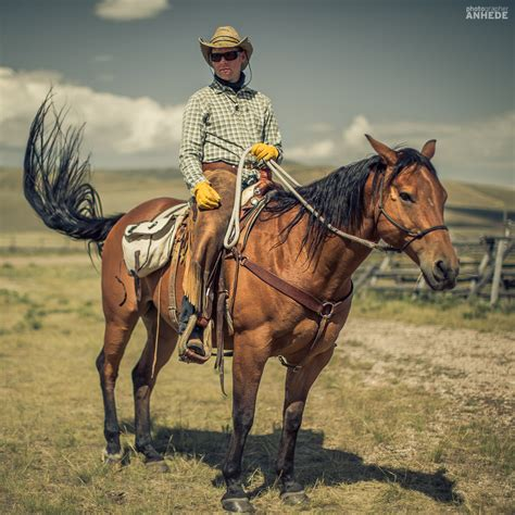 film cowboy usa grassfed beef photographer anhede kickass photos no
