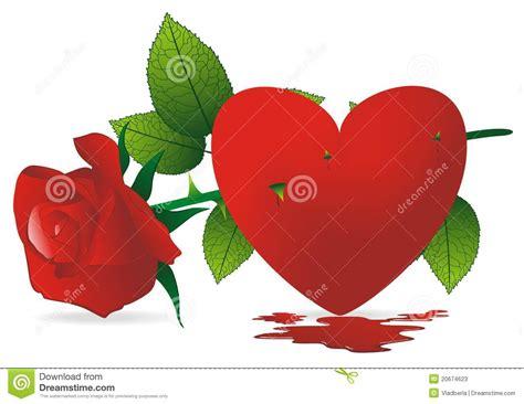 imagenes de rosas rojas y corazones rosas rojas del coraz 243 n y de las espinas fotos de archivo