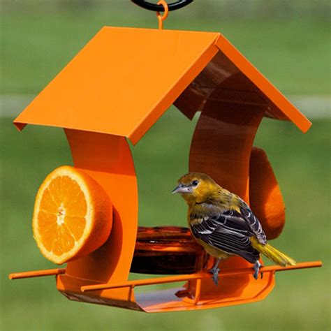 duncraft com metal house oriole feeder