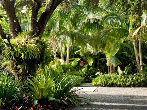 Backyard Kitchens south miami garden tropical landscape miami by