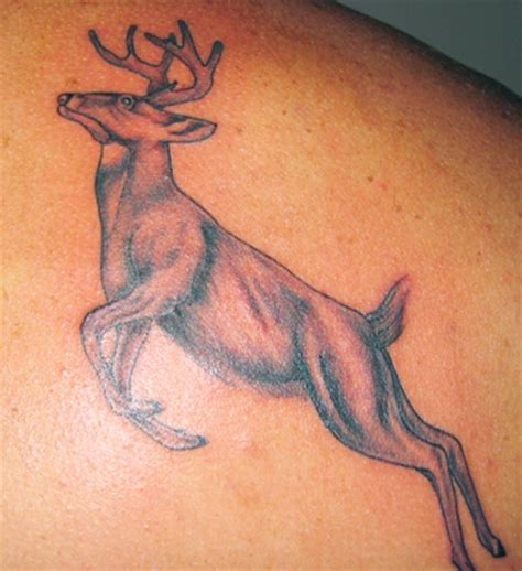 speed tattoo 33 awesome deer designs sheplanet