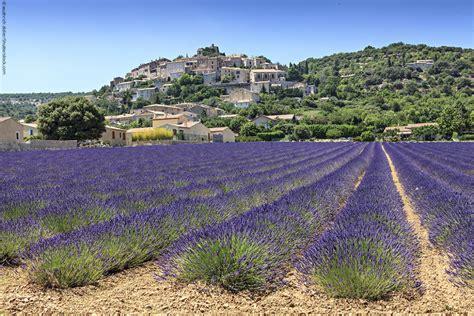 Lavendelfelder Provence by Die Lavendelfelder Der Provence Eine Reise F 252 R Alle Sinne
