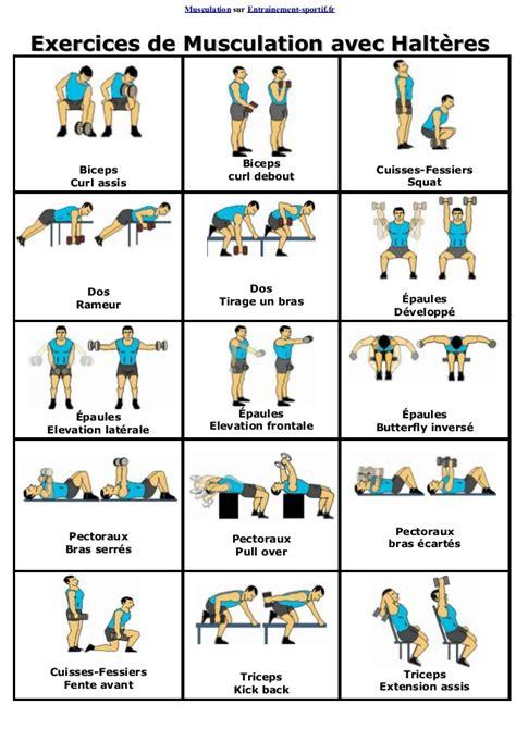 exercice sur banc de musculation exercices de musculation avec halteres