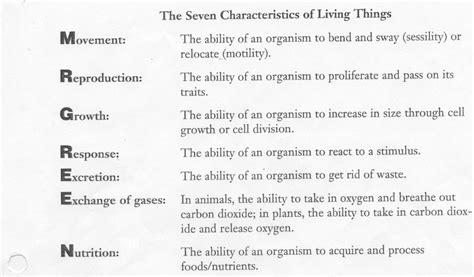 Characteristics Of Living Things Worksheet by Cells Tissues Organs And Organ Systems