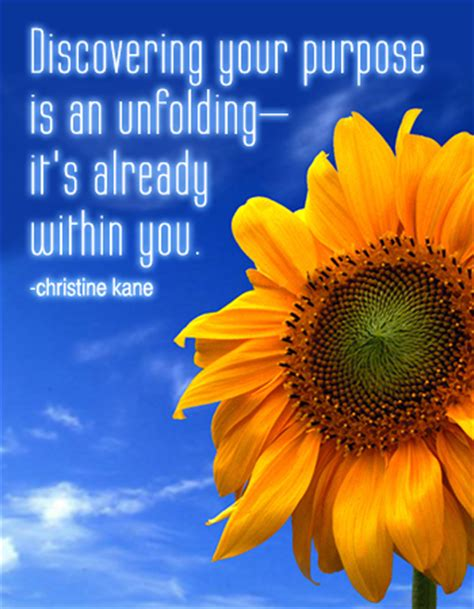 is your really worth it discover your purpose and plan books begin being christine is so awesome