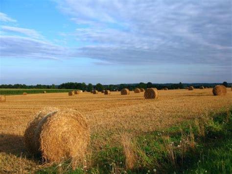 imu capannoni agricoli dl imu esenti da seconda rata terreni agricoli e