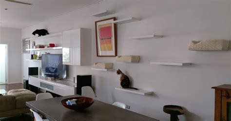 Cat Room Ideas by Small Animal Talk Environmental Modifications For Feline