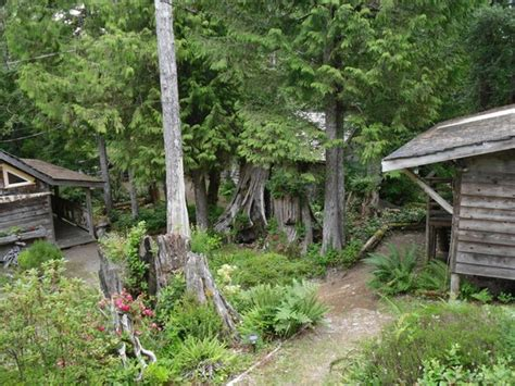 How Does Cabin In The Woods End by View From Cabin Picture Of Cottages At Woods End Landing