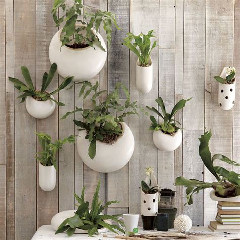 Hanging Garden In A Glass Bubble By Shane Powers For West Garden Wall Hanging Baskets