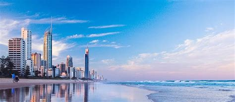 gold wallpaper sydney car hire in gold coast free airport transfers alpha