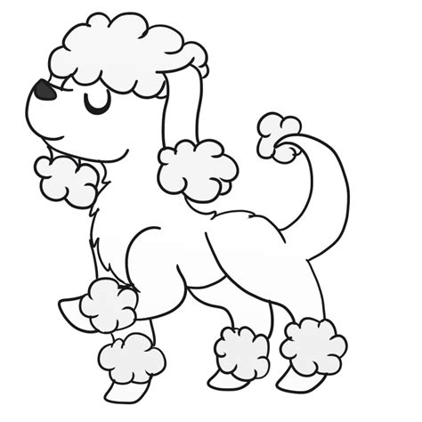 baby poodle coloring pages coloring pages