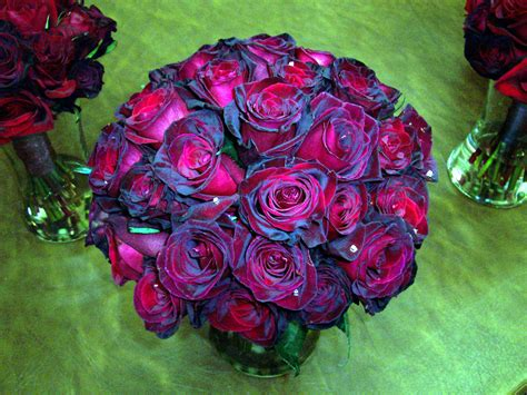My wedding colors are Red, White & Black...? | Yahoo Answers Fire And Ice Roses