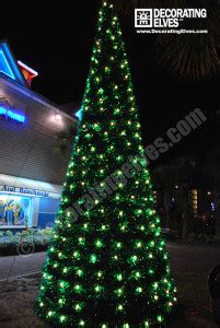 commercial outdoor trees catchy collections of commercial outdoor tree