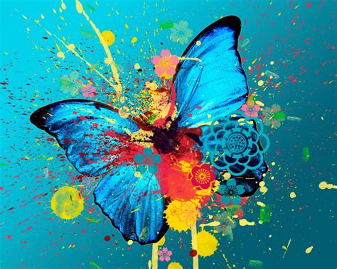 imagenes originales de animales im 225 genes originales de mariposas im 225 genes y fotos