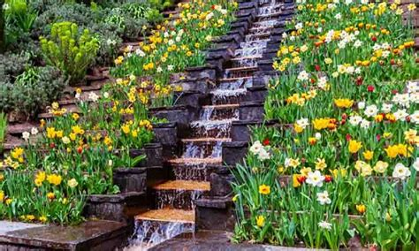 find  perfect landscaping idea   yard