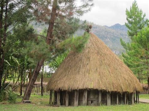 cara membuat rumah adat papua miniatur mengintip keunikan honai rumah adat suku dani