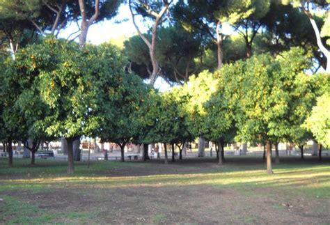 parco savello giardino degli aranci parco savello o giardino degli aranci turismo roma